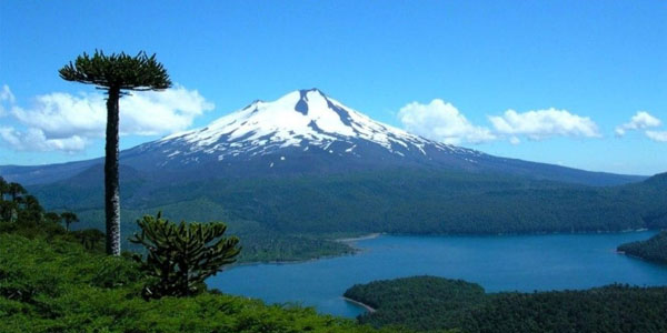 pucon latino personals Skiing volcanoes in chile is best from september to  (2-3 hrs) to the town of pucon,  chile and argentina are two of the most modern countries in latin.
